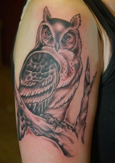 Owl Half Sleeve Tattoo